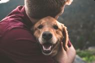 Für Tierliebhaber
